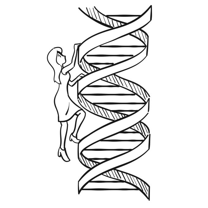 Exploring DNA